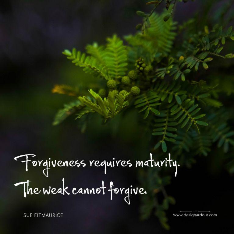 114DA_memes_Forgive