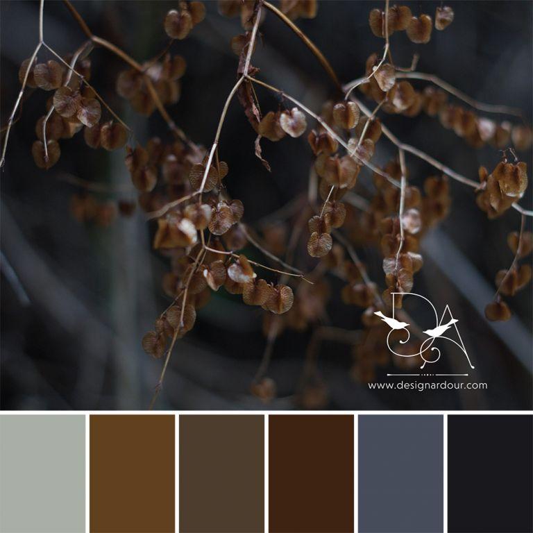 DA_ColourMemes-55
