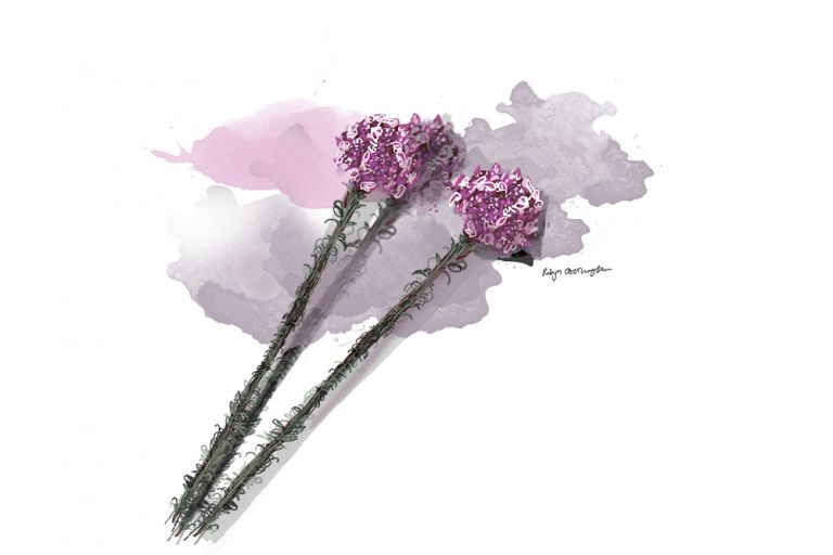 Flower01_web