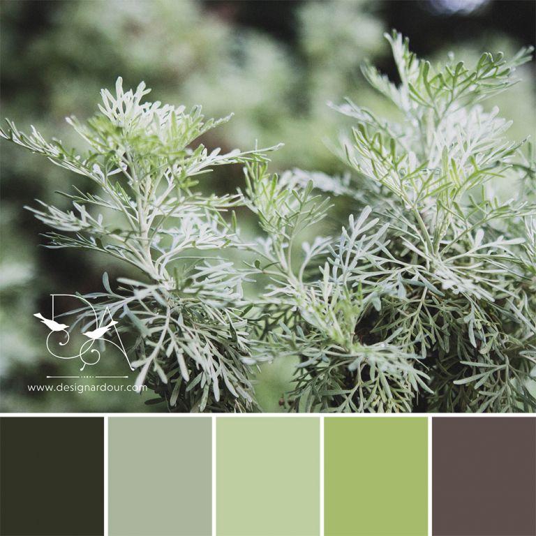 www.designardour.com // Robyn Oosthuysen Images // #ColourLife